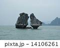 ハロン湾・闘鶏岩 14106261