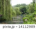 [パリ近郊観光名所]クロード モネの家 ジヴェルニーの庭の池 日本風庭園[MAISON ET JARDIN DE MONET] 14112989