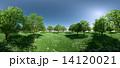 森 パノラマ 14120021
