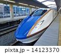 北陸新幹線 ホーム 駅の写真 14123370