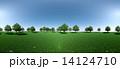 森 パノラマ 14124710