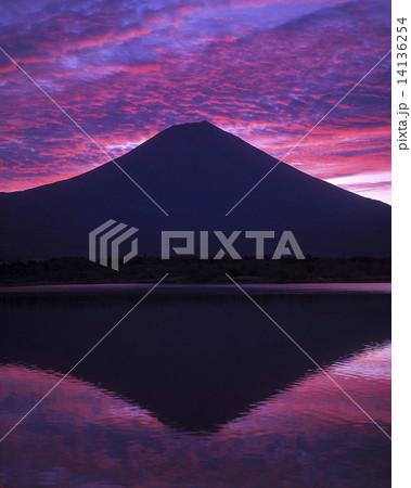 富士山 14136254