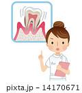 注意する看護士 歯周病 14170671