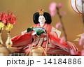 雛人形 (女雛) 14184886