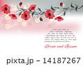 花 水彩画 赤のイラスト 14187267
