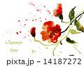 花 水彩画 赤のイラスト 14187272