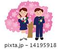 学生服の卒業式と桜 14195918