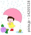 雨の日 14205528