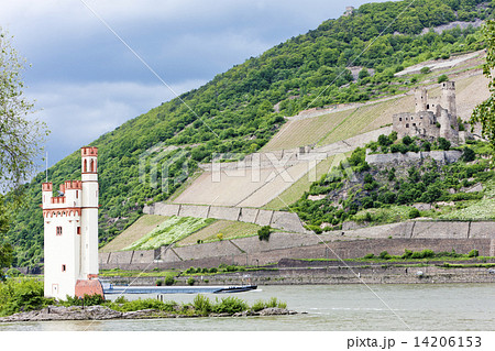 Mouse Tower and ruins of Ehrenfels Castle, Rhineland-Palatinate,