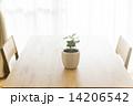 テーブルの上にある観葉植物 14206542