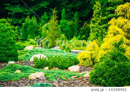 garden landscaping design flower bed green trees and. Black Bedroom Furniture Sets. Home Design Ideas