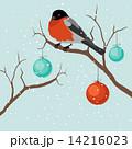 木 ベクター 樹木のイラスト 14216023