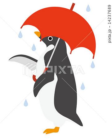 アデリーペンギン 雨ふり 14237689