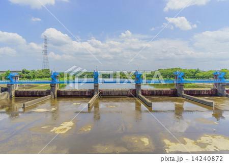 夏の中郷大橋からみた小櫃川の風景と水門 14240872
