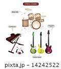 A Set of String Combo Music Equipment 14242522