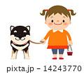 ベクター 子ども 柴犬のイラスト 14243770
