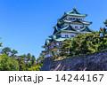 五月の名古屋城 14244167