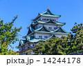 五月の名古屋城 14244178