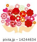 母の日 ギフト 贈り物のイラスト 14244634