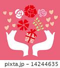 母の日 ギフト 贈り物のイラスト 14244635