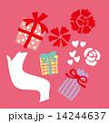 母の日 ギフト 贈り物のイラスト 14244637