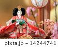 雛人形 (女雛) 14244741