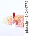 ヒヤシンス 口紅 花の写真 14244779