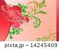 ベクター 母の日 花のイラスト 14245409