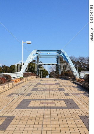かもめ橋(夢の島 運動場/東京都江東区夢の島) 14254491