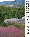 桃源郷2(タテ) 14265239