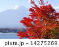 湖 紅葉 山の写真 14275269