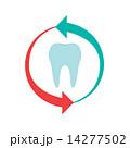歯 歯科 イラストのイラスト 14277502
