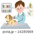 動物病院 注射 14285669