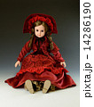フランス人形 14286190