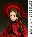 フランス人形 14286192