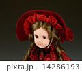 フランス人形 14286193