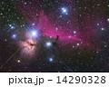 馬頭星雲 14290328