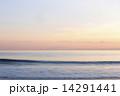 湘南のサンセット 14291441