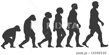猿03 14300530