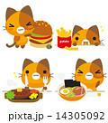 ベクター 三毛猫 ネコのイラスト 14305092