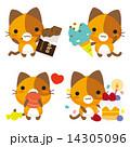 三毛猫 ベクター ネコのイラスト 14305096