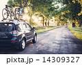 林道 森林 車の写真 14309327