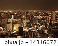 大阪府 ビル群 オフィス街の写真 14316072