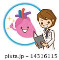 心臓 イラスト 14316115