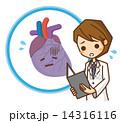 心臓 イラスト 14316116