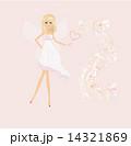 beautiful fairy vector graphic 14321869