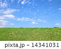 土手 草原 雲の写真 14341031