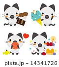 ベクター シャム猫 ネコのイラスト 14341726