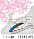 北陸新幹線_白地と桜 14343165