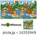 Find differences (duck) 14350949